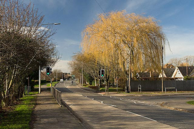 St Audrey Lane