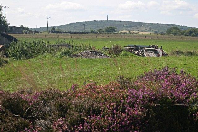 Western side of Hingston Down