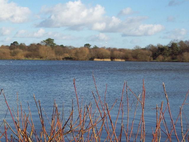 Heath Pond, Petersfield