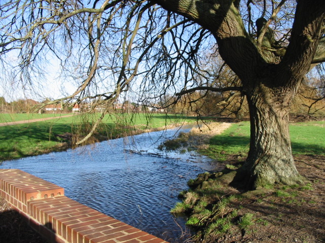 The river Nailbourne, Garrington.