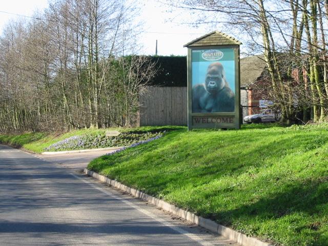 Car park entrance to Howletts zoo.