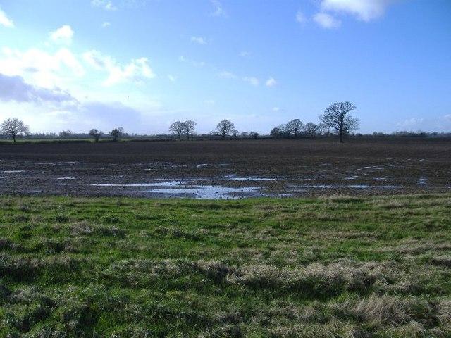 Farmland near Bushton Road