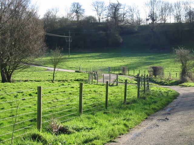 Pasture at Upper Garrington farm.