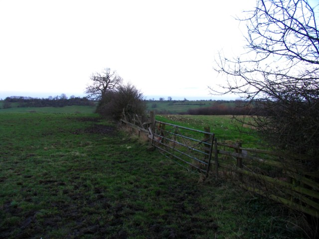 Fields south of A47