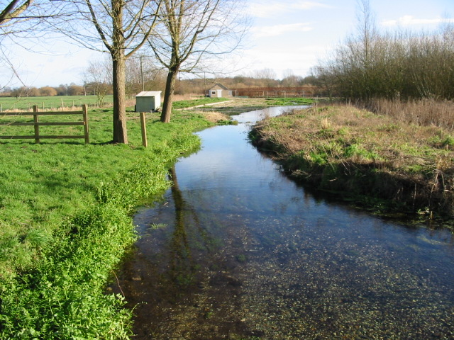 Stream feeding disused watercress beds, Garrington.