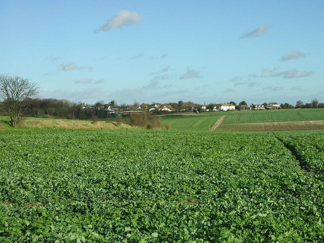 Farmland, looking NE towards Adisham Road.