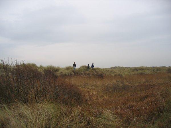 Hightown dunes
