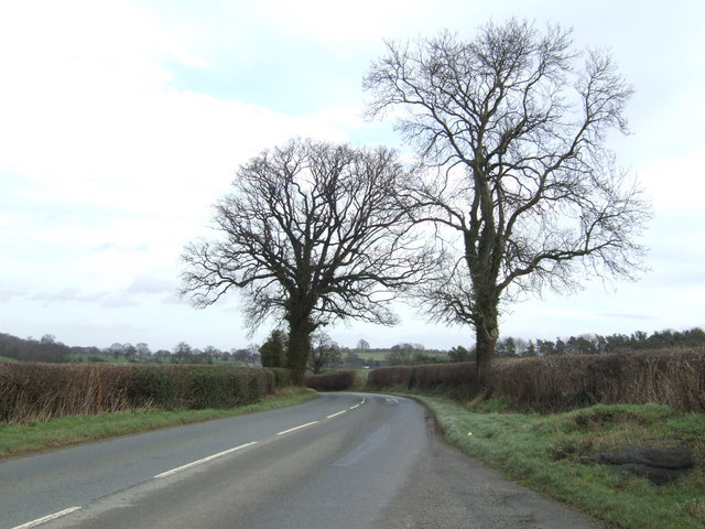Oaks by the B4348