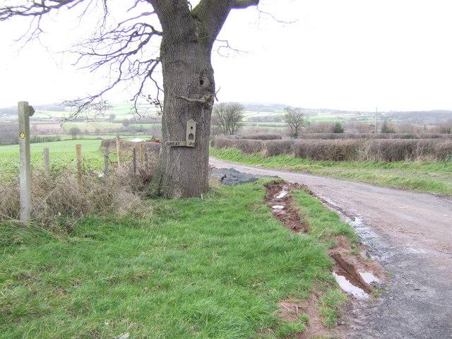 Road to Great Porthamel