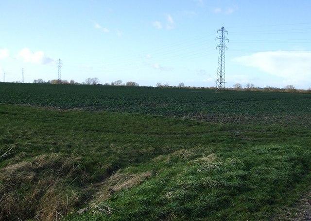 Pylons & fields