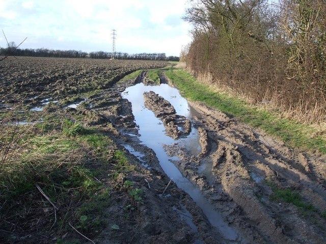 Mud, mud, glorious mud !