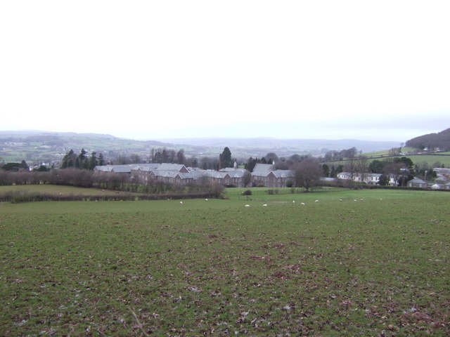 Sheep pasture above Talgarth Hospital buildings