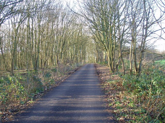 Minor road through Ratby Burroughs