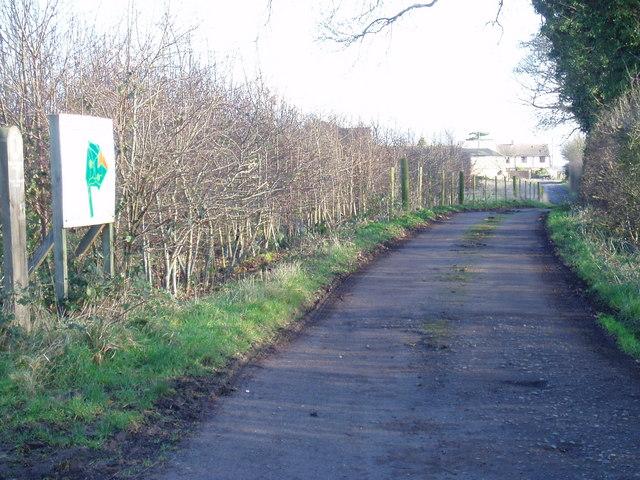 Track towards Woodlands Farm