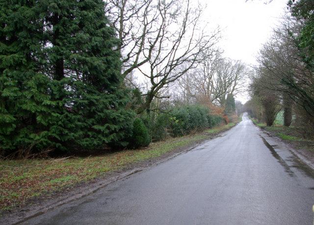 Road near Buckham Hill Farm