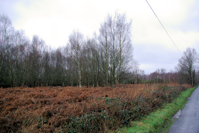 Piltdown - Common Land?