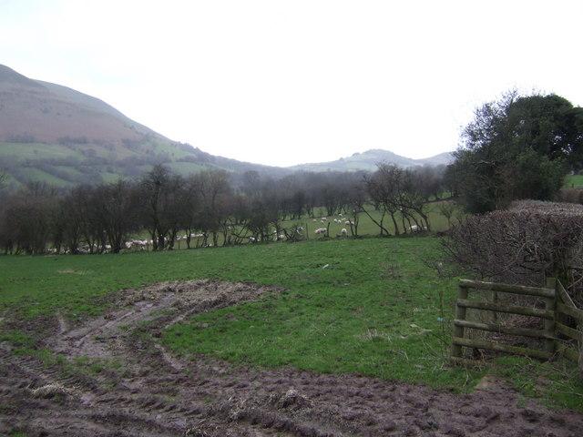 Upper Rhiangoll Valley