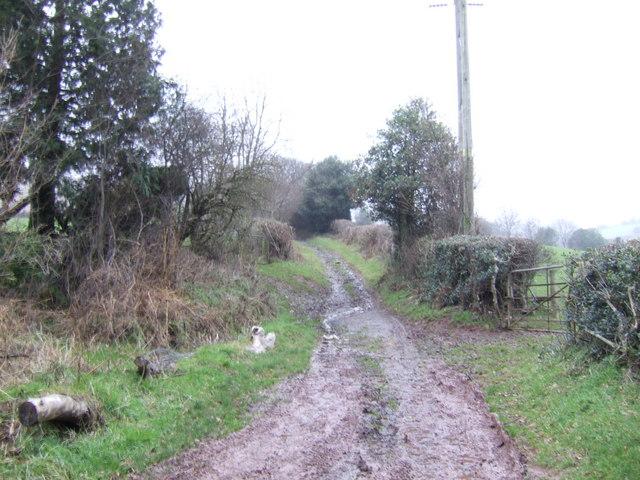 Bridleway to Blaenau-fry