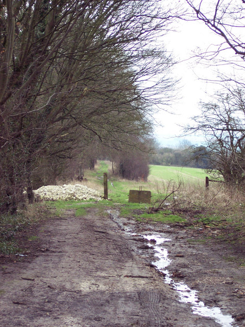 Bridleway from the Old Shaston Drove to Bishopstone