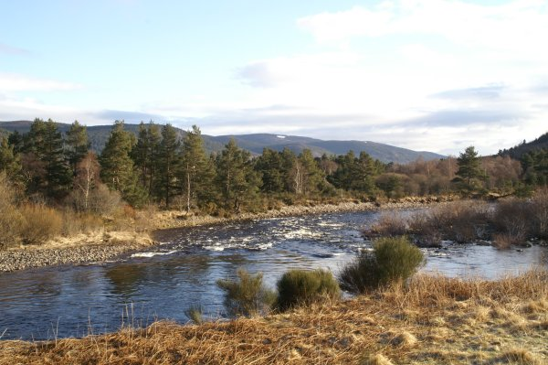 River Dee at Inchmarnoch