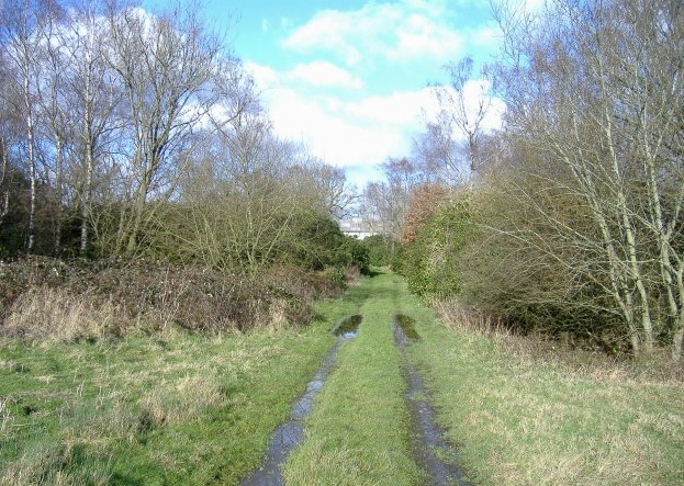 Bridleway from Draycot