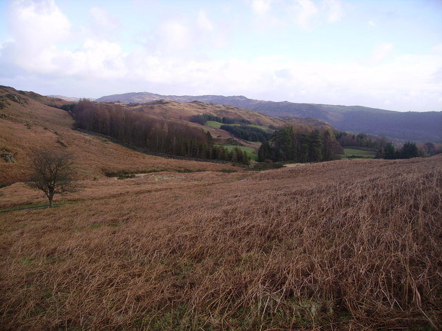 On the slopes of Tottlebank Height.
