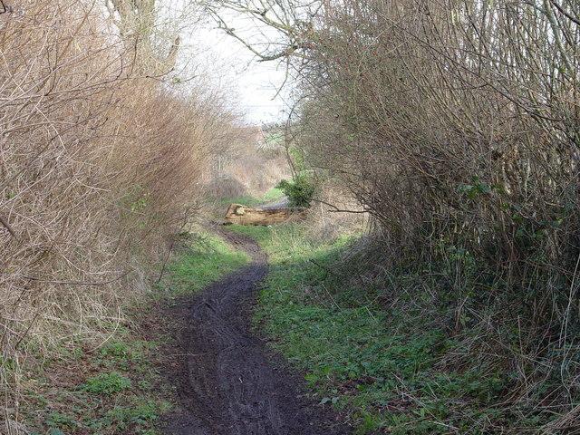 Footpath end