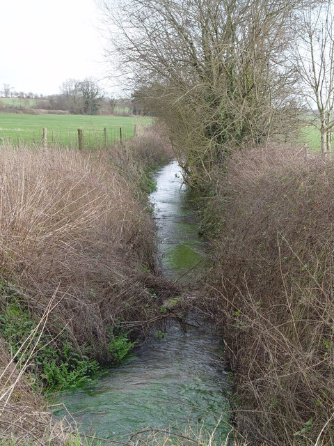 Tributary of the River Allen