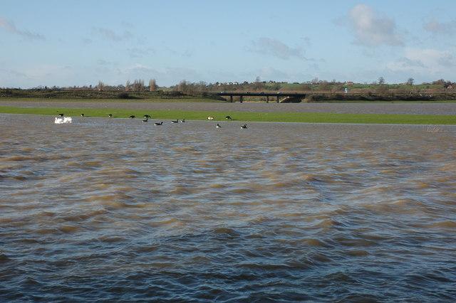 A flooded Twyning Meadow