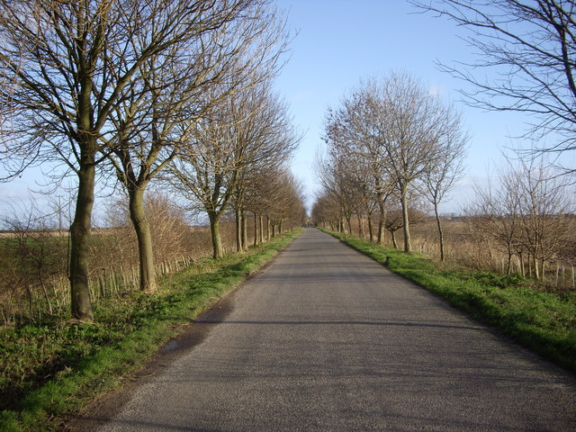 The Road To Gedney Drove End