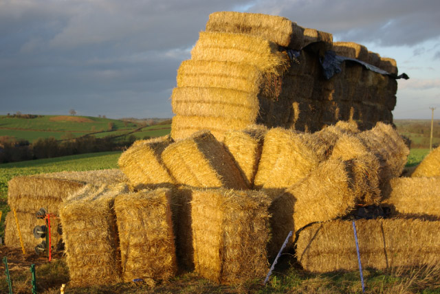 Haystack near Epwell