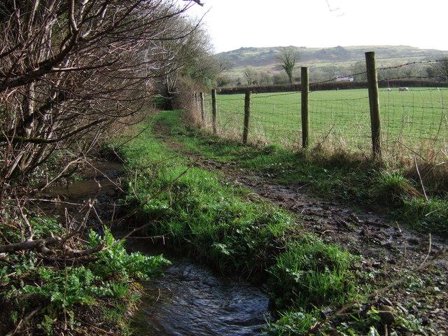 Stream and path near Sourton