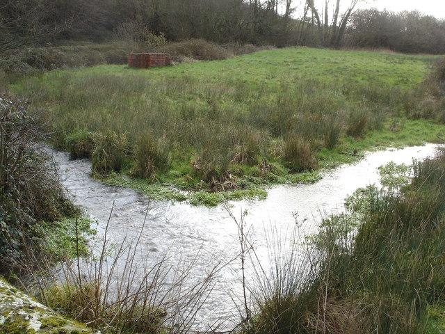 Upstream from Mullins Bridge