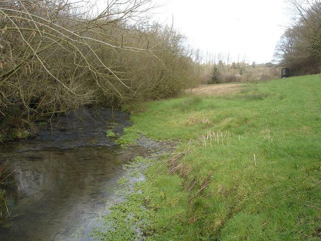 Downstream from Mullins Bridge