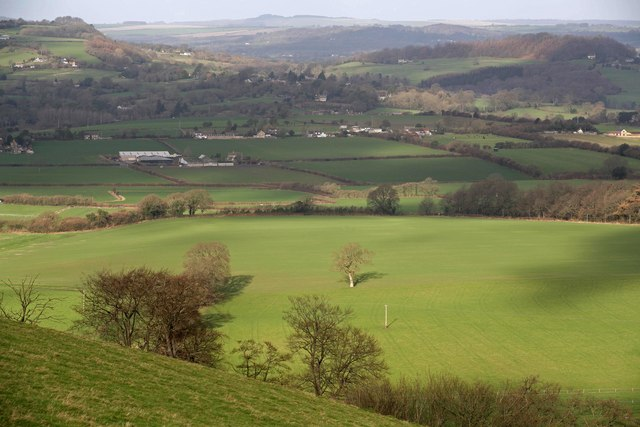 View from Ox Drove towards Donhead St  Andrew