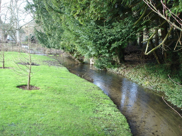 Stream at the bottom of the garden