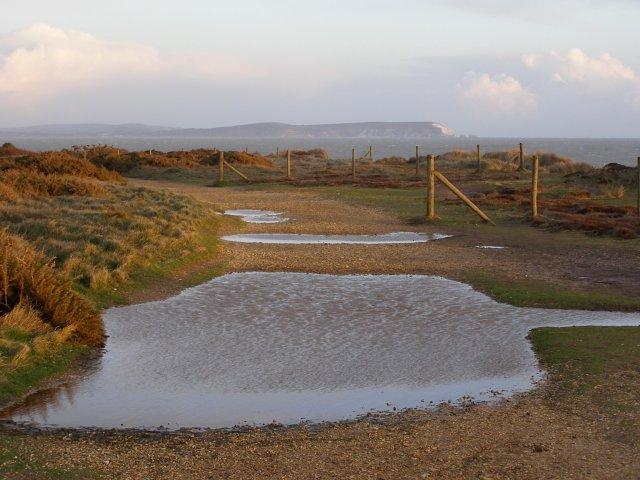 Footpath on Warren Hill, Hengistbury Head