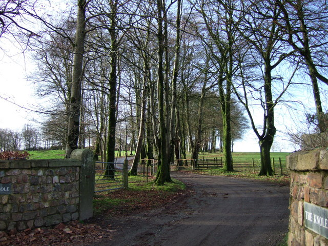 Driveway to The Knole