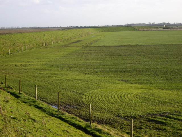 Field and Raised Sea Line Footpath near Gedney Drove End