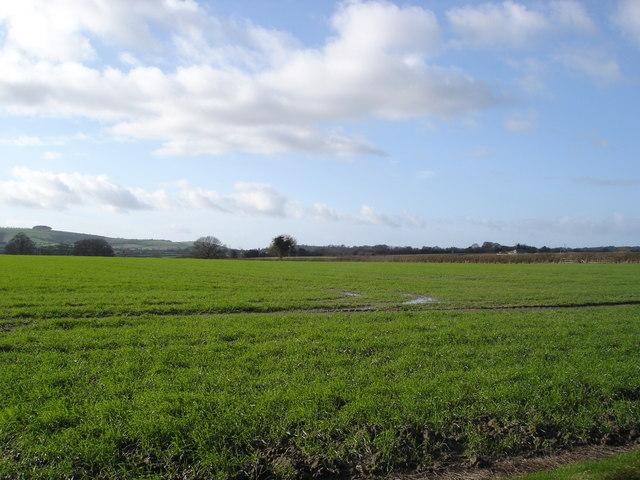 Rowberry Farm land