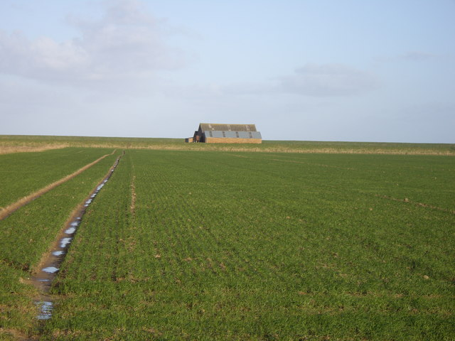 Field and Farm Building, Gedney Drove End