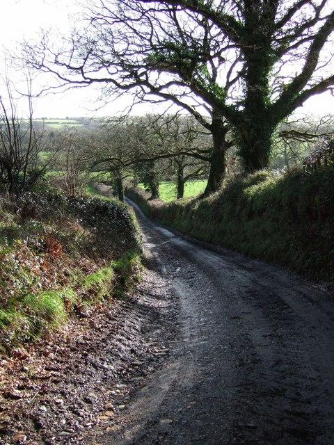 Farm road to Beara