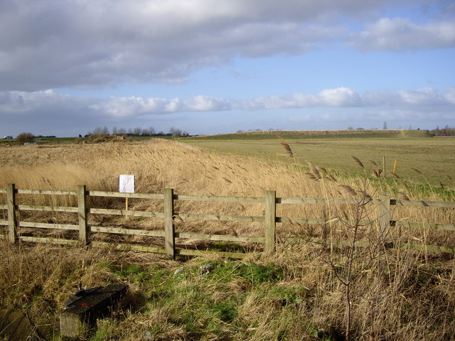 Field by A16 Layby Near Spalding