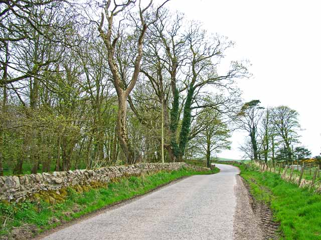 The road to Balgreggan