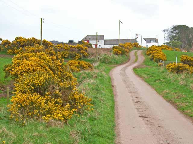 The road to Culgrange