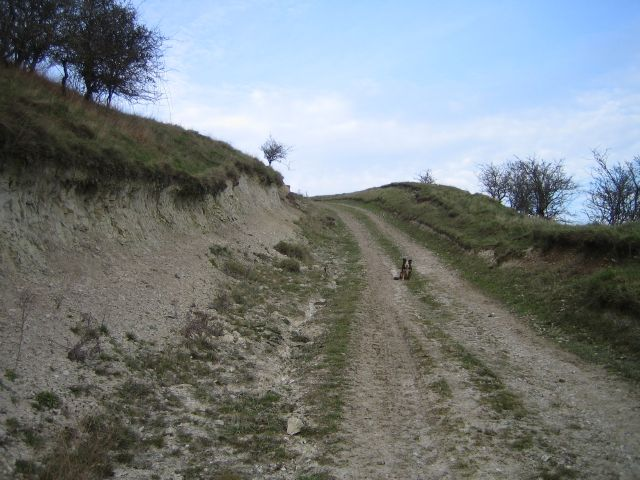 Bridleway on East Hill