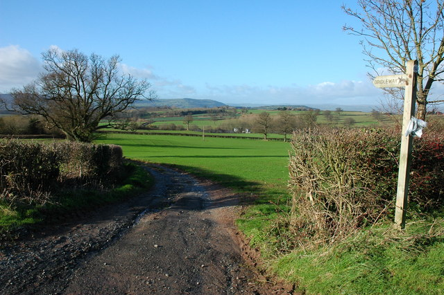 Bridleway at Mansell Gamage