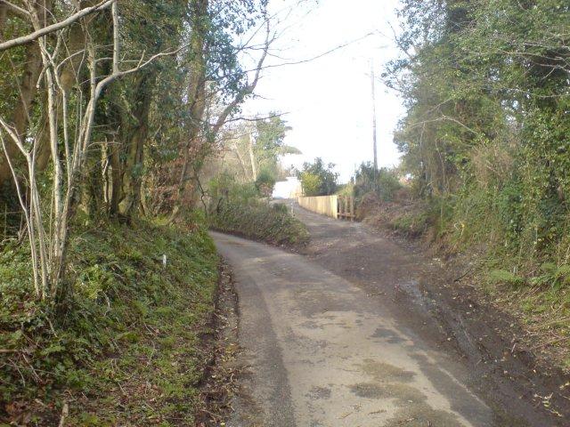 Narrow country road