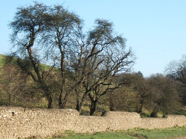 A cotswold wall