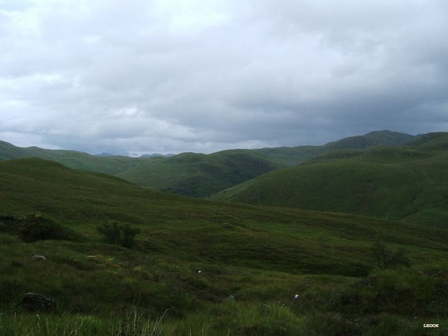 View on Attadale forest